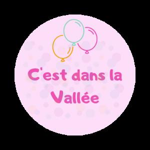 logo-cest-dans-la-vallee